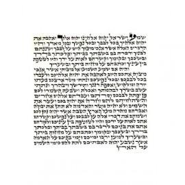 Mezouza Sepharade 12 cm cachère (parchemin)